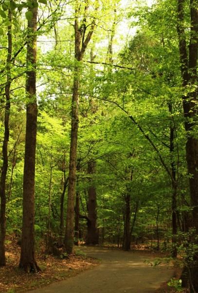McDowell-Nature-Preserve-696x1024