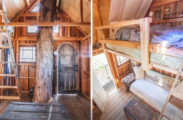 Multi-Level Treehouse in 110 ft. Eucalyptus Tree-006