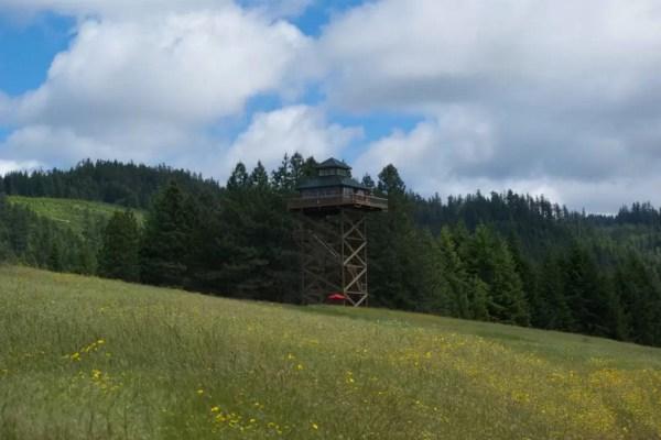 Off-Grid Lookout Tower Cabin in Tiller 002