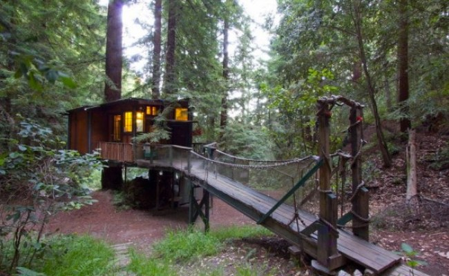 Tiny Treehouse Cabin In The Redwoods