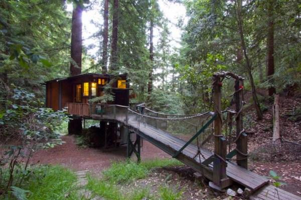 Redwood Treehouse 009