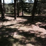 Rural Central Wisconsin Tiny House Lot For Rent 2