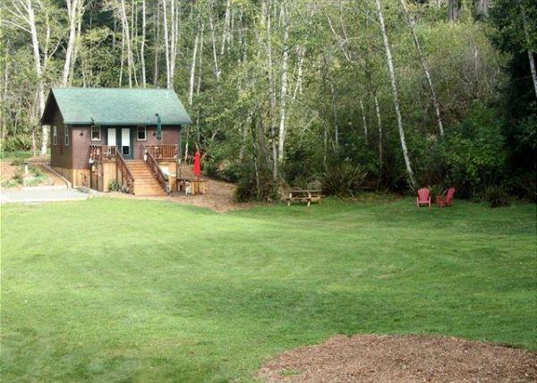 scotty-point-cabin-near-redwoods-004