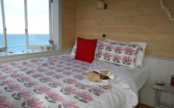 Shepherd Hut Micro Cabin with Ocean Views 004