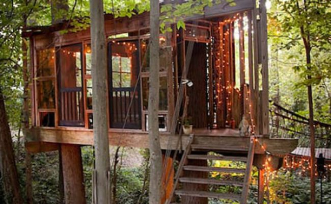 Incredible Three Part Treehouse Cabin In Atlanta