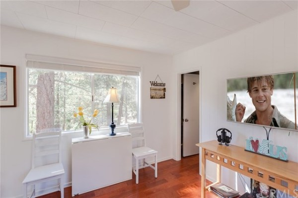 tiny-big-bear-cottage-on-2-acres-for-sale-008