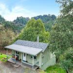 Tiny Cottage with View in Cazadero 001