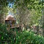 Tiny Mushroom Dome Cabin 019