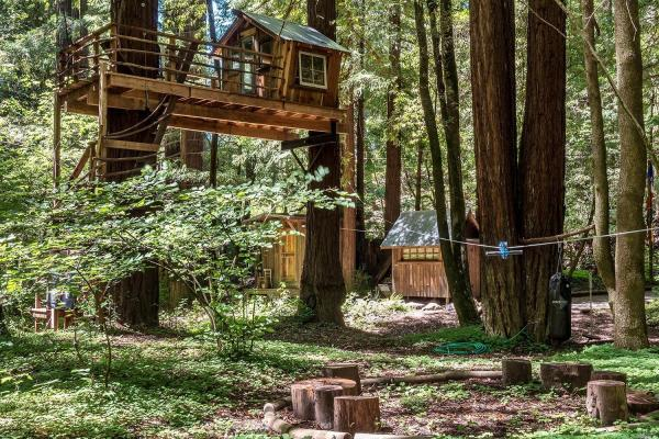 Tiny Redwood Cabin with Ziplines and Treehouse
