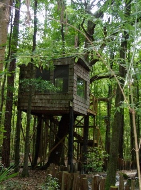 Tree Houses at Hostel Forest in Brunswick Georgia 003
