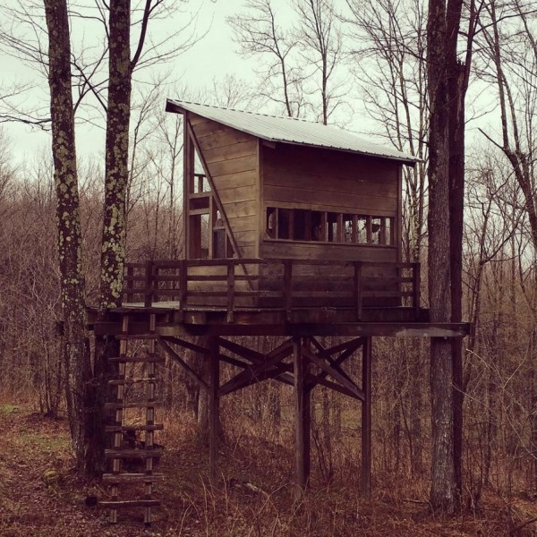 Treehouse For Sale 0011