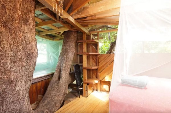 Treehouse Micro Cabin on a Permaculture Farm 002