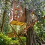 Trillium Treehouse at Treehouse Point 001