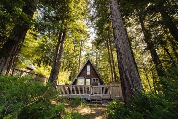 amazing-tiny-a-frame-cabin-in-the-redwoods-016