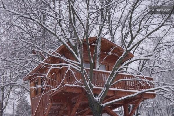 aromantica-treehouse-11