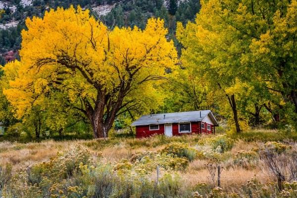bigstock-Old-Red-Cabin-76819901