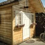 cozy-cabin-001