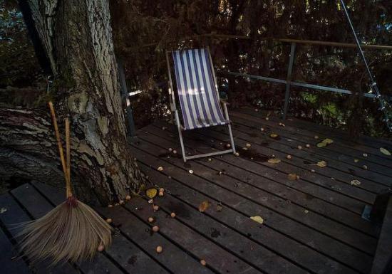 deck-modern-tree-house