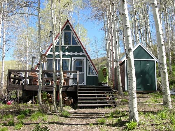 Green A-frame Tiny House (1)