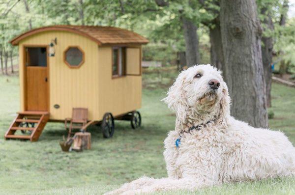 gute-shepherd-hut-tiny-houses-0018
