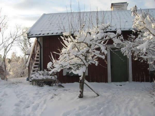little-village-cottage-sweden-034