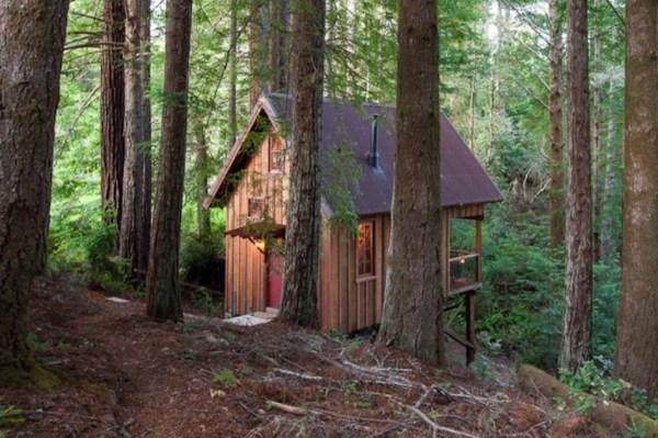 225 Sq. Ft. Tiny Owl Tree Cabin