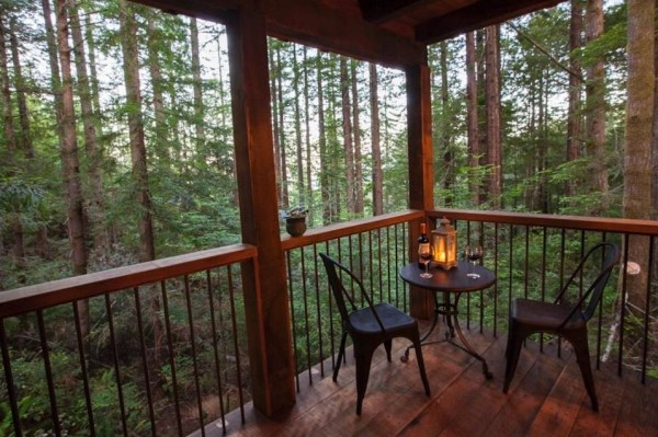 Back Porch with Awesome Views of the Forest