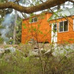 rich-the-cabin-mans-spacious-tiny-house-01