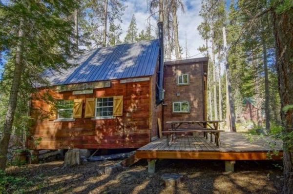 riverfront-tiny-cabin-in-the-woods-for-sale-03