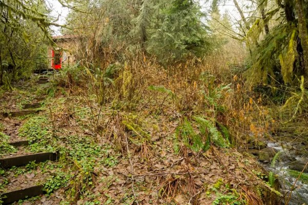 thimbleberry-creek-off-grid-micro-cabin-0011