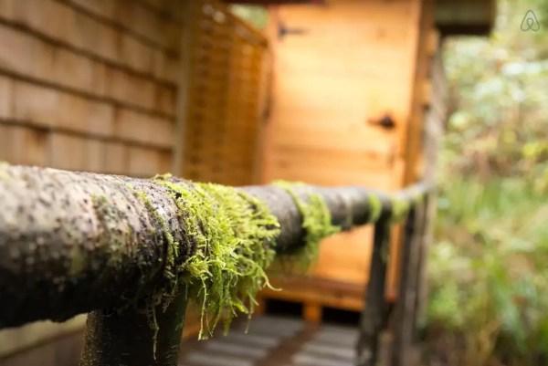 thimbleberry-creek-off-grid-micro-cabin-009