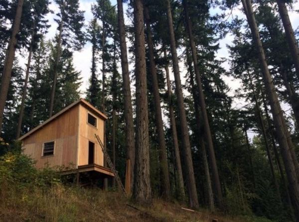 tiny-cabin-for-6k-in-6-days-02a