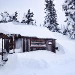 Tiny House Blizzard