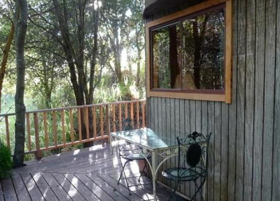 tiny-mushroom-dome-cabin-deck