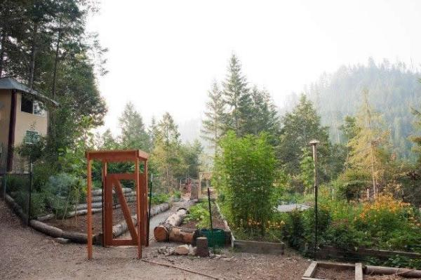 tiny-off-grid-cabin-in-forest-009