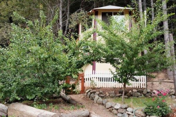 tiny-off-grid-cabin-in-forest-013