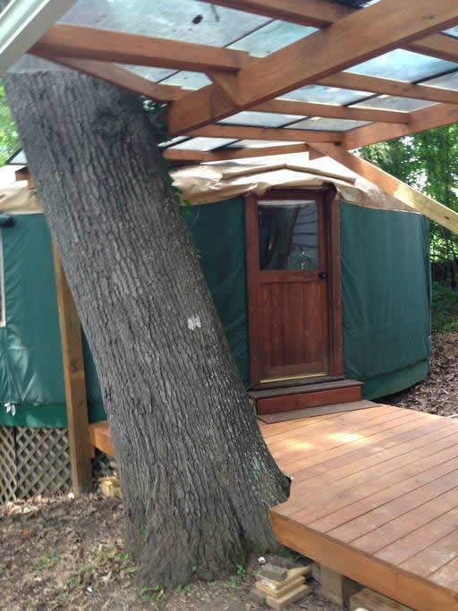 Yurt Vacation Cabin Near Asheville