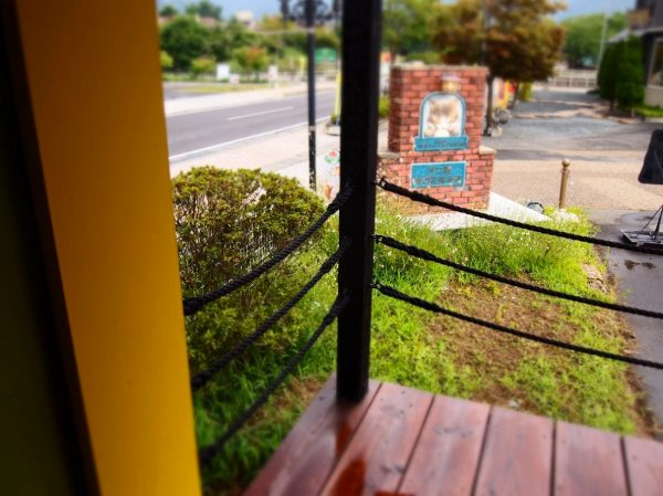 tree-heads-&-co-mobile-coffee-shop-green-roof-tiny-shop-004