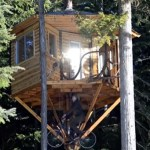 treehouse-cabin-with-bicycle-powered-elevator