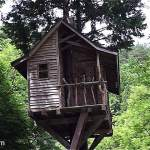 treehouse-mt-fuji-via-faircompanies-001