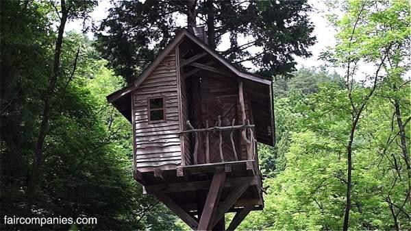 Man Builds Slim Treehouse in Mount Fuji