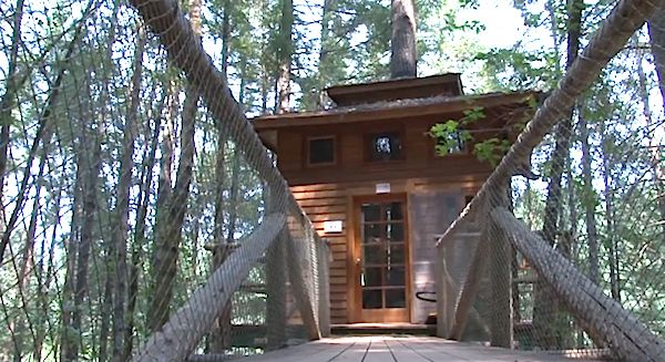 Diy Treehouse Cabin Resort Video