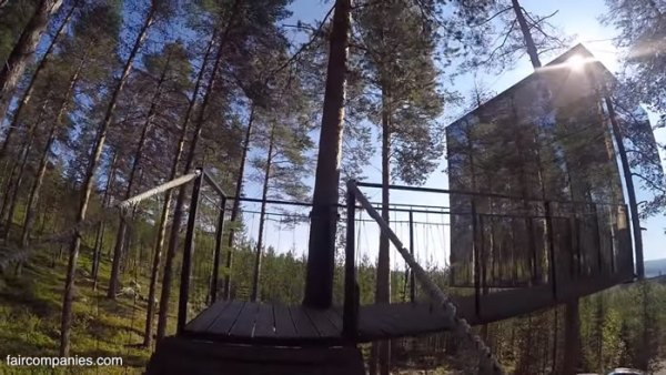 ufo-like-treehouses-in-forest-003