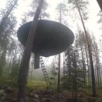 ufo-like-treehouses-in-forest-009