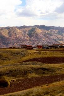 one-day-in-cusco-itinerary-horseback-to-sacsaywaman-alpacas-street-food-38