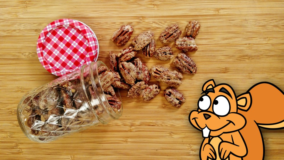 Candied Pecans // Tiny Kitchen Big Taste