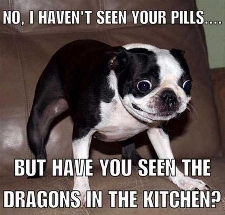 Top 28 Funniest Minions Memes 18