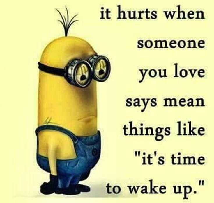 56 Minions Quotes to Reignite Your Love 25