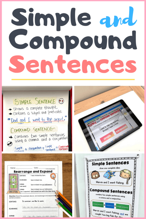 small resolution of Simple and Compound Sentences - Tiny Teaching Shack