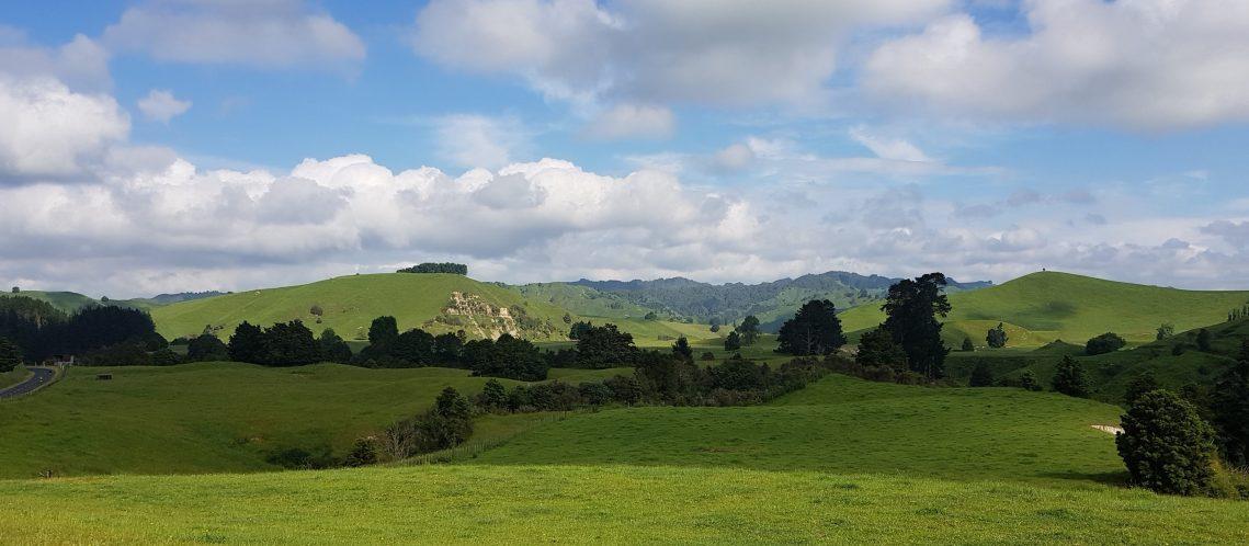 Te Araroa Trail Near Taumarunui